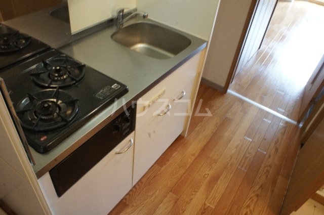 ライスフィールド 202号室のキッチン