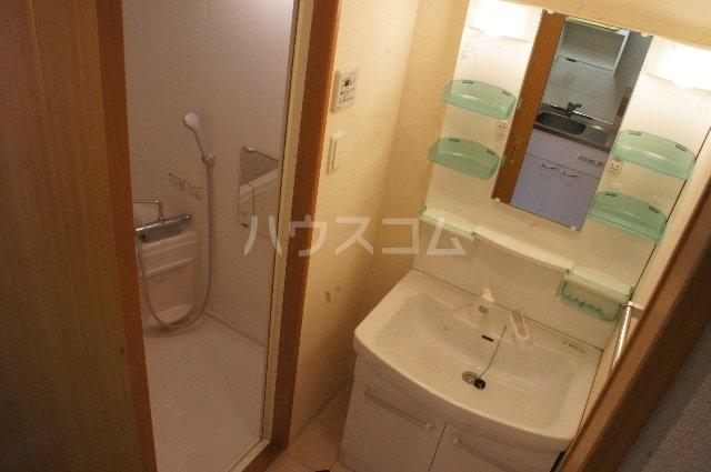ライスフィールド 202号室の洗面所