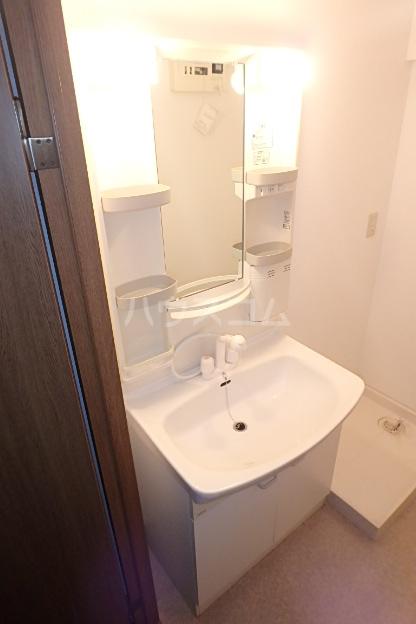 パラディーソ白壁 3B号室の洗面所