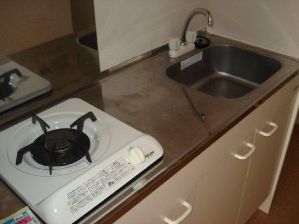 ガーデンビュー石神C聖蹟 307号室のキッチン