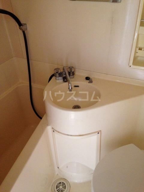 サウスドゥファルコン 108号室の洗面所