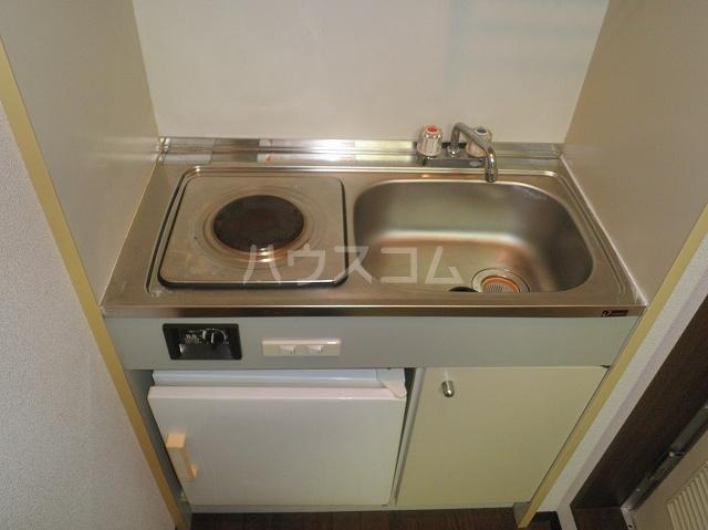 テオピレス 1-D号室のキッチン