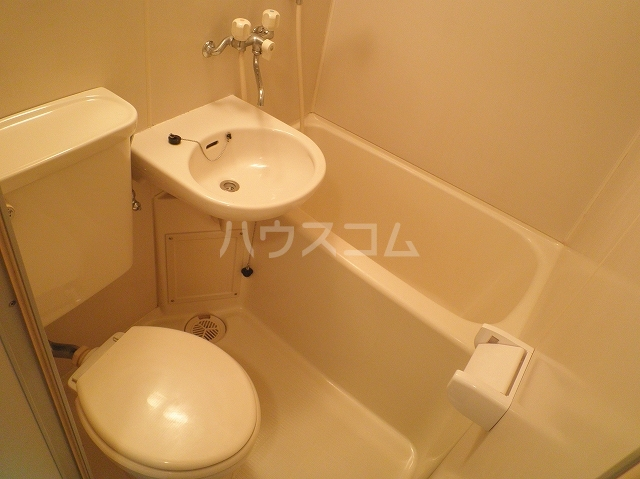 テオピレス 1-D号室の風呂