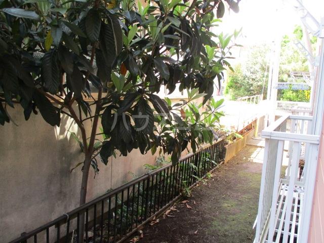 ハーミットクラブハウス鶴ヶ峰D 104号室の庭