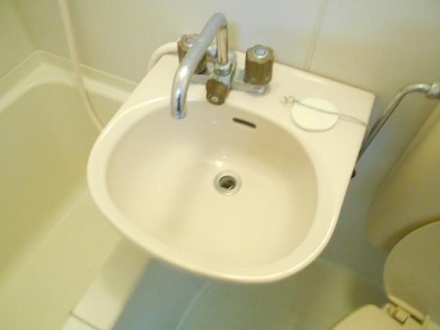 フラワーマンション 102号室の洗面所