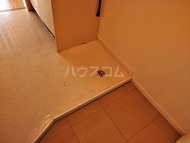 ドルフィン 201号室の玄関
