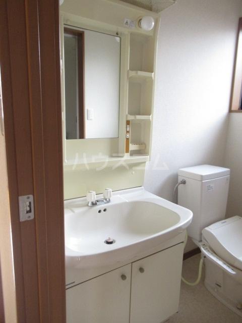グリーンヒルズ 203号室の洗面所