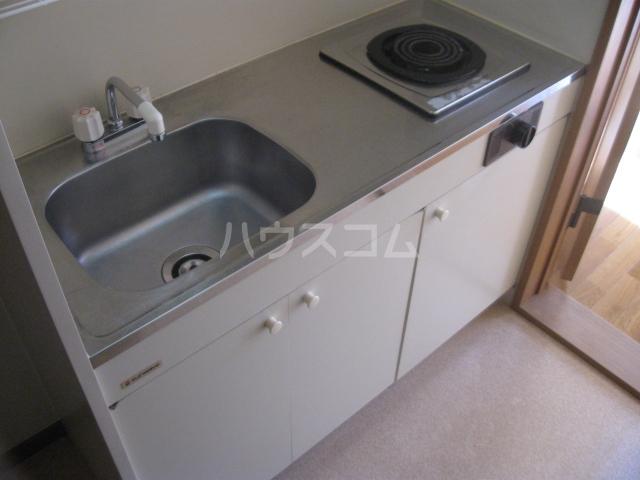 第2サンハイツ・カナイ 205号室のキッチン
