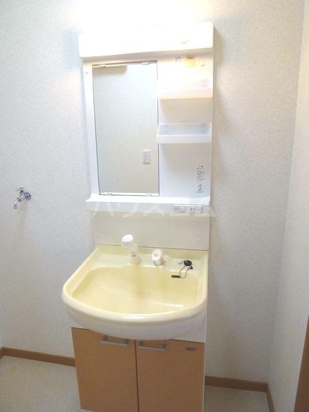 メゾン・ド・リザの洗面所