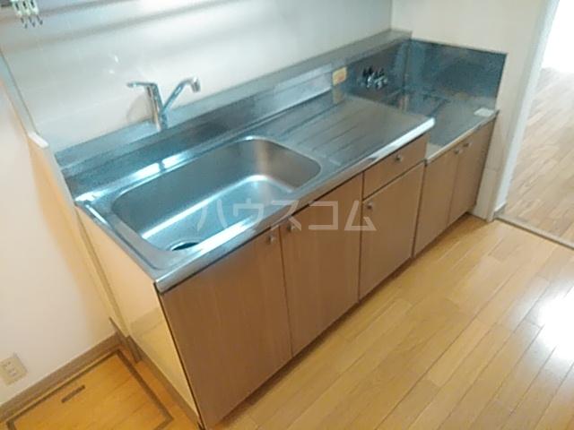 HI-FLEX洗足池 102号室のキッチン