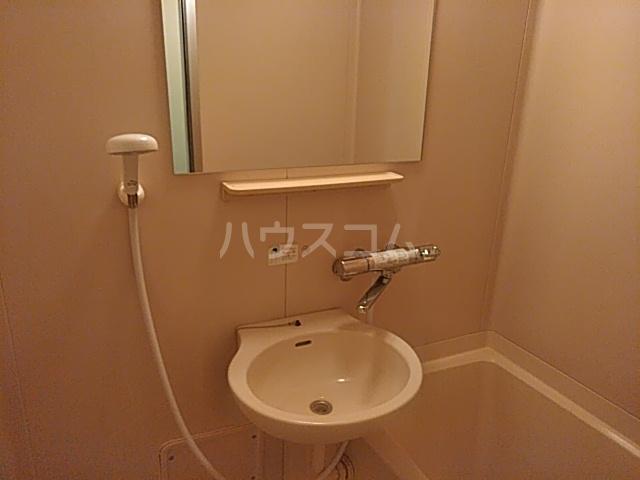 HI-FLEX洗足池 102号室の洗面所