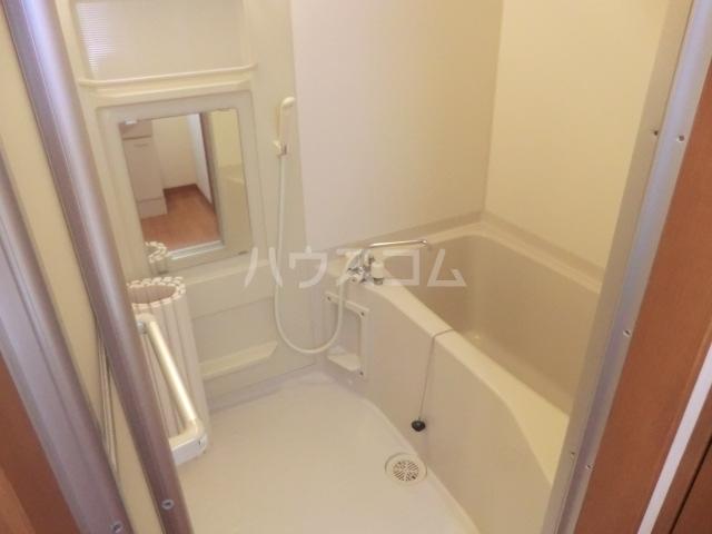 グランド キャニオン 205号室の風呂