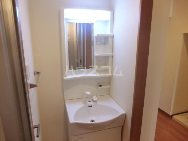 グランド キャニオン 205号室の洗面所