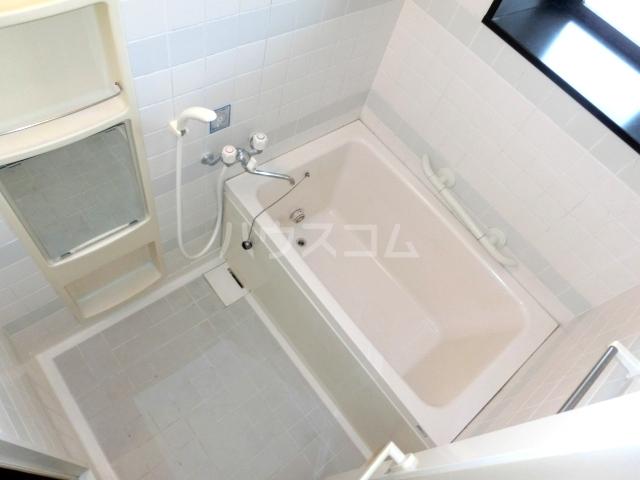 ブルースカイサニークレスト 105号室の風呂