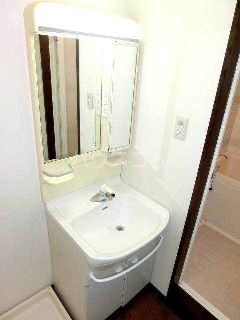 ブルースカイサニークレスト 105号室の洗面所