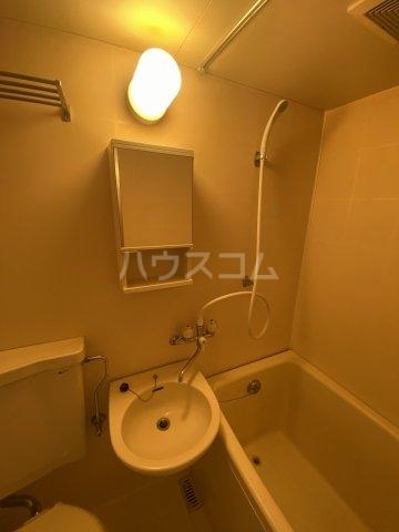 メゾン・ド・トワレ 102号室の洗面所