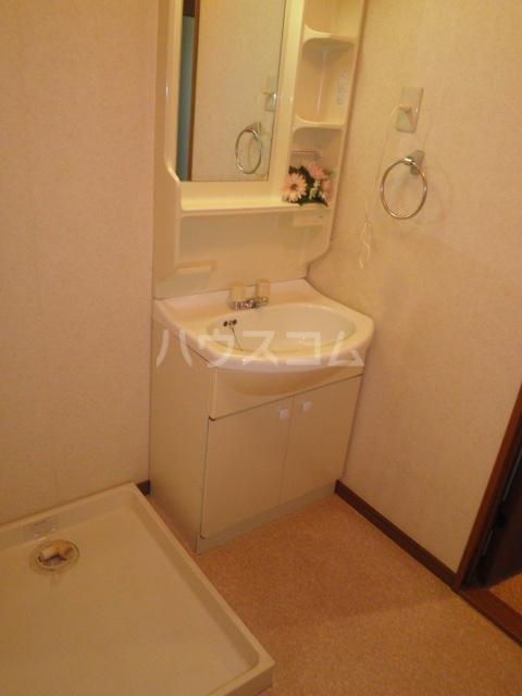 サープラス石塚A 201号室の洗面所