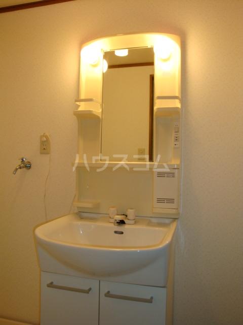 プルミエール浅岡 303号室の洗面所