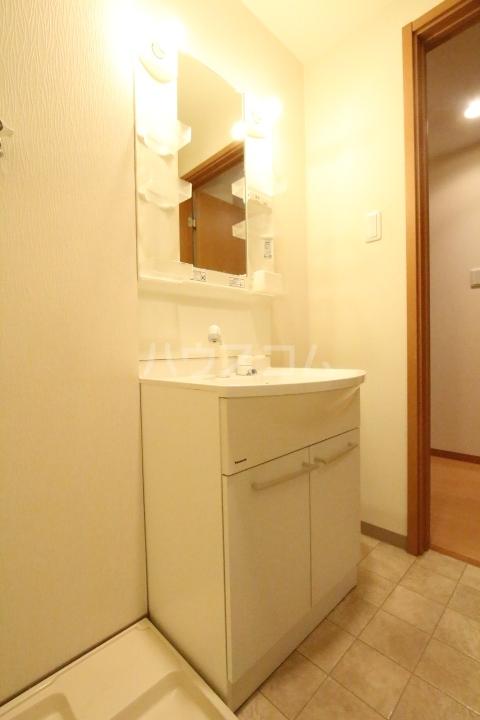 ベルコリーヌ 202号室の洗面所