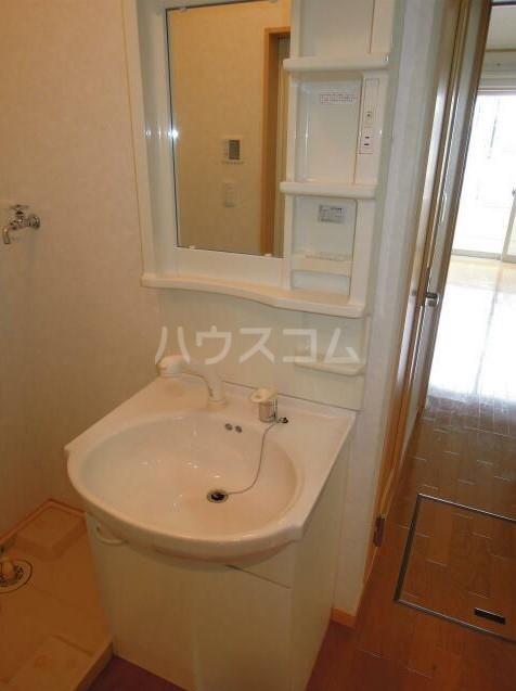 ダンディライオン 203号室の洗面所