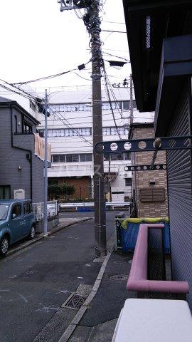 ヒルトップテラス三春台 201号室の景色