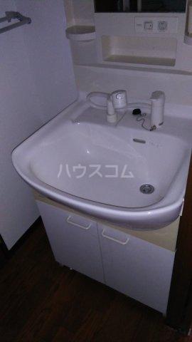 ヒルトップテラス三春台 201号室の洗面所