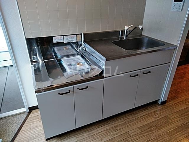 ラフォーレ松原 202号室のキッチン