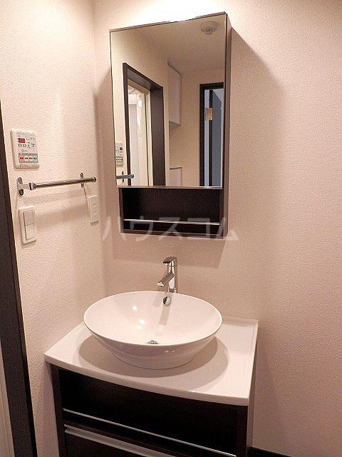 リブリ・ヴァータジェム 105号室の洗面所