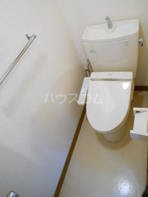 ハイツサングリーン 303号室のトイレ
