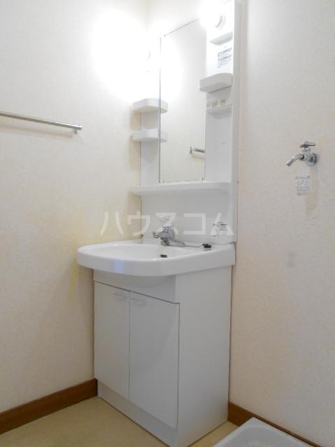 ハイツサングリーン 303号室の洗面所