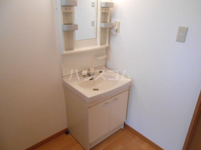 やなぎパークマンション 2A号室の洗面所