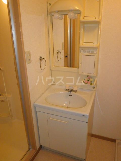 ライフピット八田 2B号室の洗面所