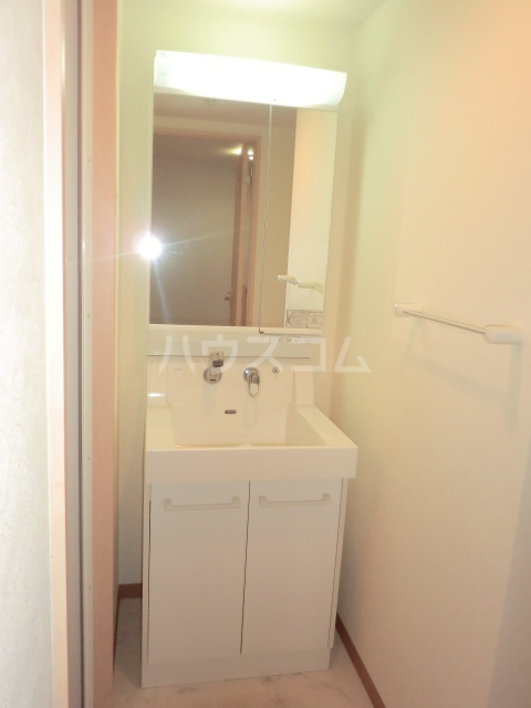 ハピネスTommyⅡ 305号室の洗面所