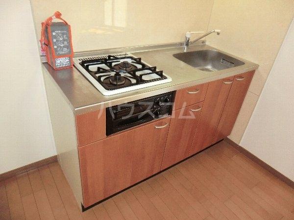 ハイネス・サンⅡ 2A号室のキッチン
