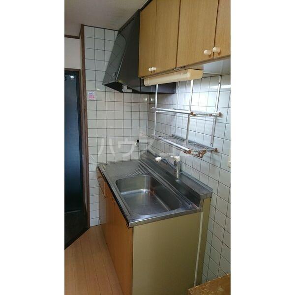 柳津パレス 203号室のキッチン