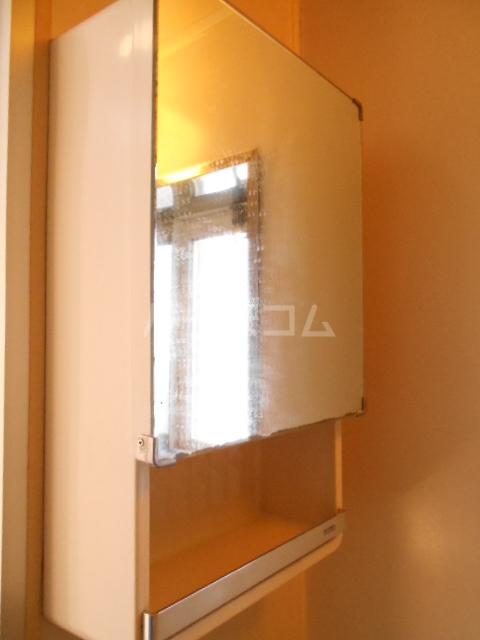 メゾングリンピース 101号室の洗面所