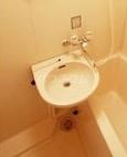 クレセントM浮島 303号室の洗面所