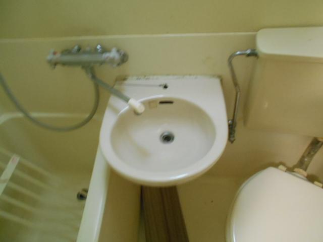 ハイツブルーム 203号室の洗面所