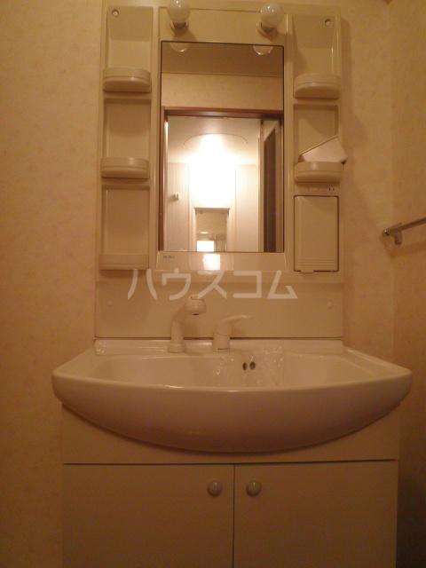 メゾン三幸リバースター 101号室の洗面所