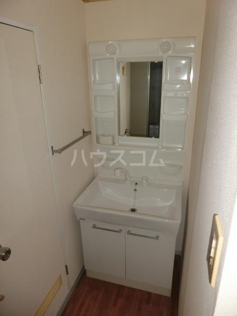 ハイツドゥエル 202号室の洗面所