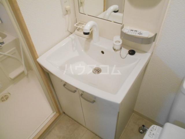 フラッティ壬生坊城 507号室の洗面所