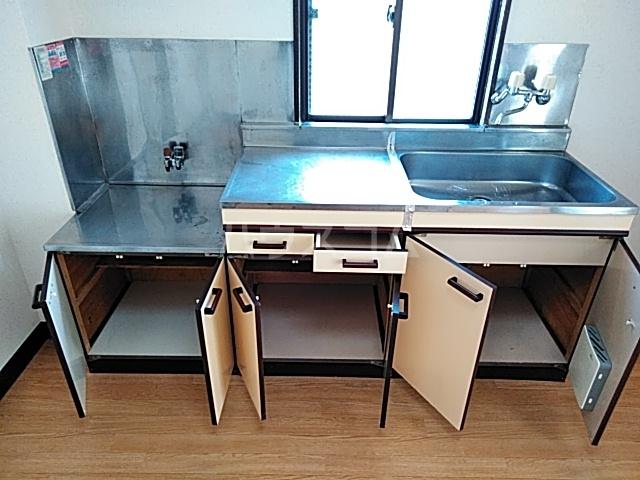ベアーフルートハウス 301号室のキッチン