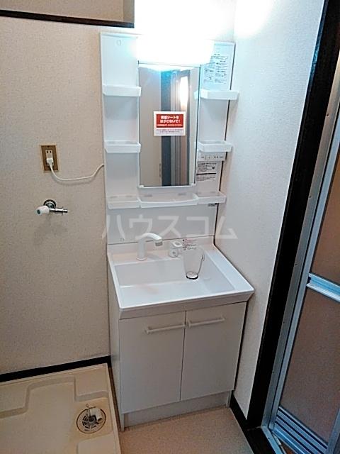 ベアーフルートハウス 301号室の洗面所