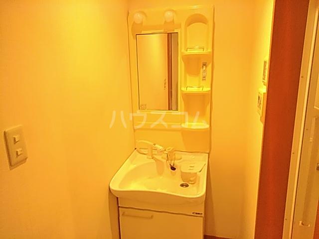 ヘルシーハイツⅡ 102号室の洗面所
