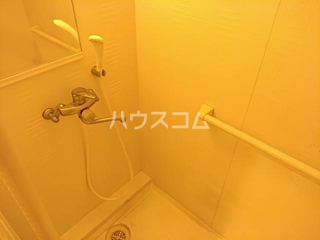 ヘルシーハイツⅡ 102号室の風呂