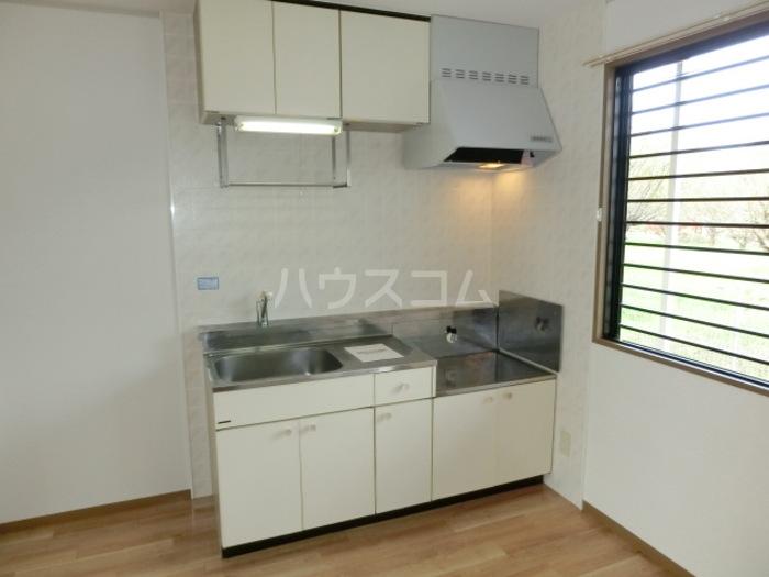 スカイハイツC 103号室のキッチン