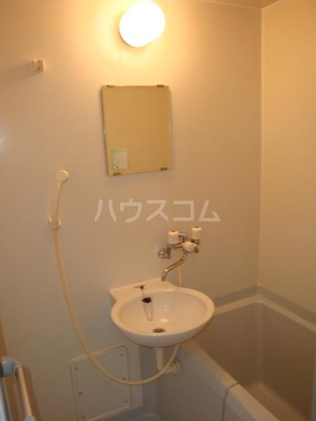 アムール英 204号室の洗面所