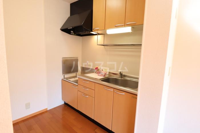 アークグレイスⅡA 201号室のキッチン