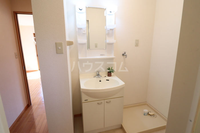 アークグレイスⅡA 201号室の洗面所