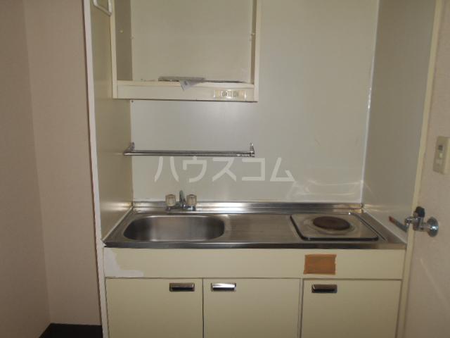 ダイヤパレス 116号室のキッチン